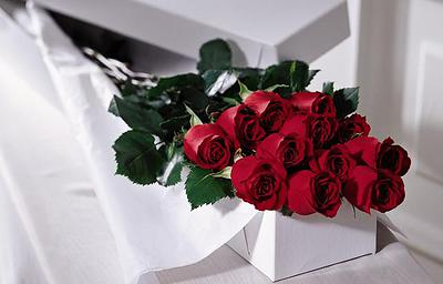 Doz Roses in presentation box